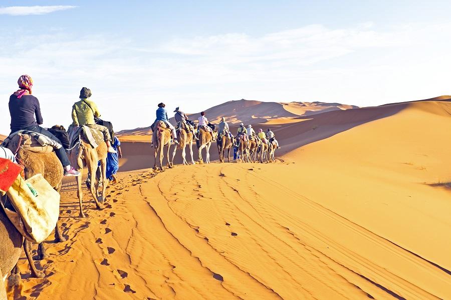 Караван верблюдов в Сахаре, Тунис.